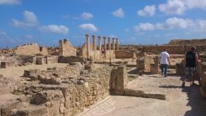 Zypern (79)