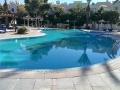 41Sunny Pool (6)