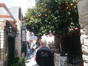 Zypern (56)